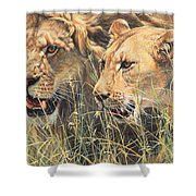The Royal Couple II Shower Curtain