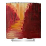 The Ruby Way Shower Curtain