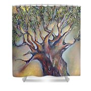 The Sacred Tree Shower Curtain