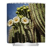 The Saguaro Cactus  Shower Curtain