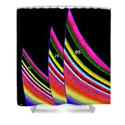 The Sails Shower Curtain