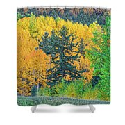 The Sanctity Of Nature Reified Through A Photographic Image  Shower Curtain