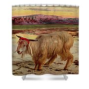 The Scapegoat Shower Curtain by William Holman Hunt