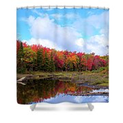The Scarlet Reds Of Autumn Shower Curtain