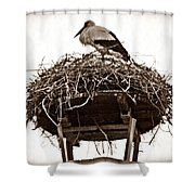 The Schierstein Stork Sepia Shower Curtain