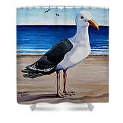 The Sea Gull Shower Curtain