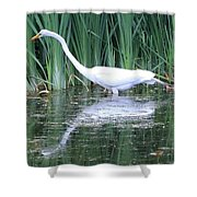 The Search For Food Continues Shower Curtain