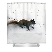 The Search Is Over Shower Curtain
