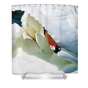 The Seductive Swan Shower Curtain