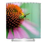 The Seeker Shower Curtain