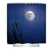 The Seventh Moon Shower Curtain