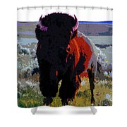 The Shamans Buffalo Shower Curtain