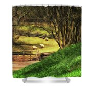 The Sheep's In The Meadow Shower Curtain