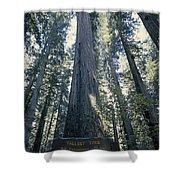 The Shenandoah National Forest Shower Curtain