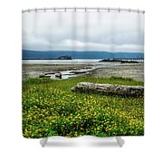 The Shoreline Shower Curtain