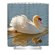 The Show Off Shower Curtain