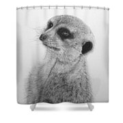The Silent Sentry Shower Curtain