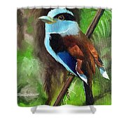 The Silver Breasted Broadbill Shower Curtain