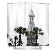 The Silver  Shower Curtain