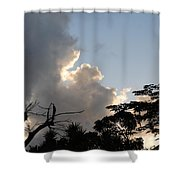 The Sky And The Trees Shower Curtain
