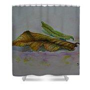 The Sleeping Leaf Shower Curtain