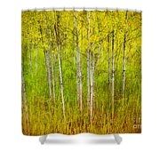 The Small Forest Shower Curtain