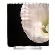 The Smallest Petals Shower Curtain