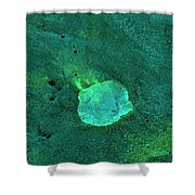 The Smallest Universe Shower Curtain
