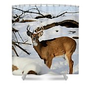 The Smell Shower Curtain