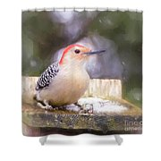 The Smiling Woodpecker  Shower Curtain