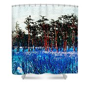 The Snow King 1899 Shower Curtain