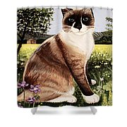 The Snowshoe Cat Shower Curtain