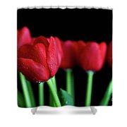 The Softer Tulips Shower Curtain by Tracy Hall