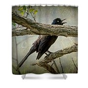 The Song Of Nature Shower Curtain