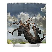 The Soul Of A Tree Shower Curtain