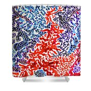 The Sound Of Fireworks Shower Curtain