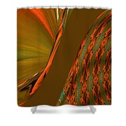 The Space Between Two Forces Abstract Shower Curtain
