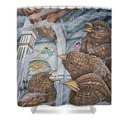 The Sparrows Of San Elizario Shower Curtain