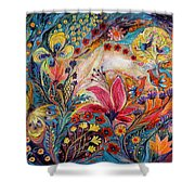 The Spiral Of Life Shower Curtain