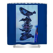 Reflecting On The Spirit Of Ecstasy  Shower Curtain