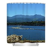 The Spit Shower Curtain