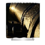 The Splendor Of Antiquity Shower Curtain
