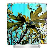 The Spring Has Come Shower Curtain