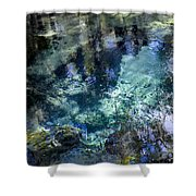 The Springs Shower Curtain