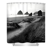 The Stacks Bw Shower Curtain