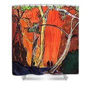 The Standley Chasm Shower Curtain