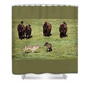 The Standoff Shower Curtain