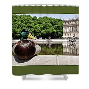 The Stately Duck Shower Curtain