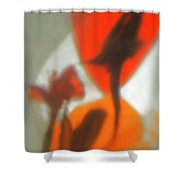 The Still Life With The Shadows Of The Flowers. Shower Curtain