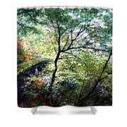 The Stone Wall Shower Curtain
